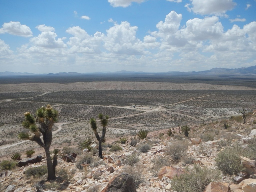 The arid landscape at Castle Mountain around 90 km due south of Las Vegas, NV. Credit: NewCastle Gold.