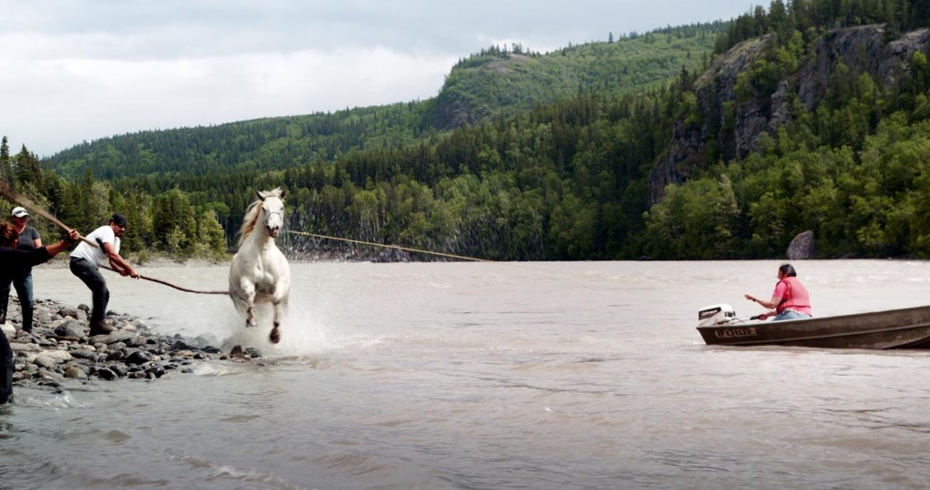 A guide outfitter swims a horse across the Stikine River. Credit: Canada Wide Productions