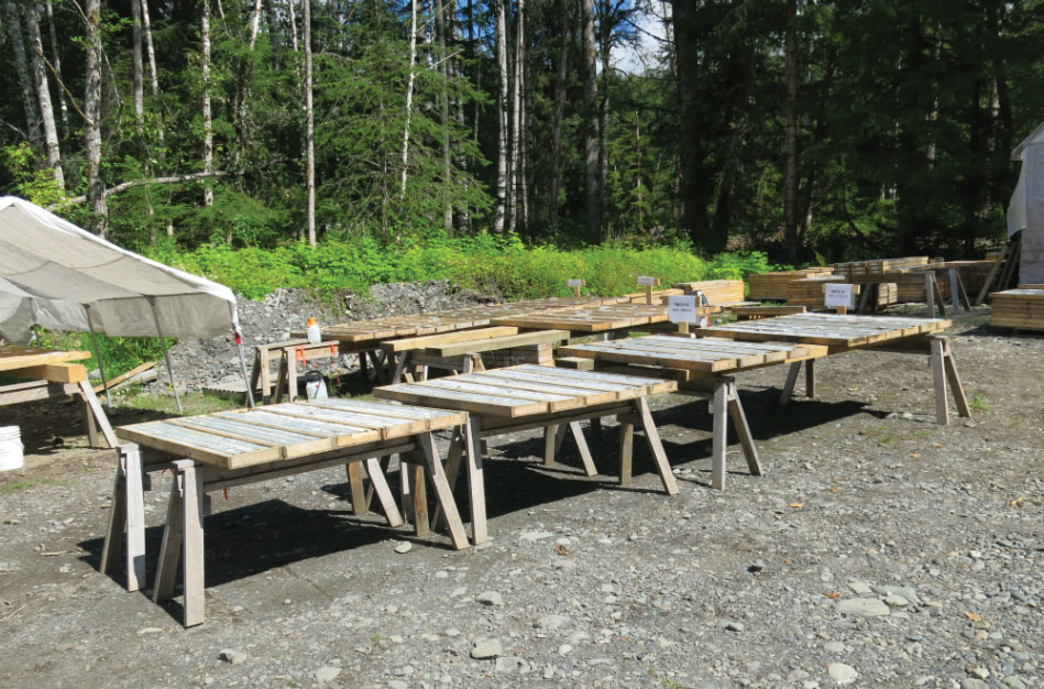 Core racks at Dolly Varden Silver's namesake silver project in northwest British Columbia. Credit: Dolly Varden Silver.