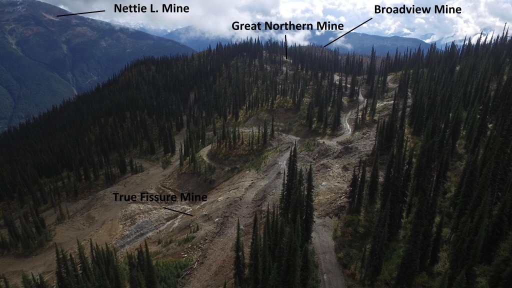 Aerial view of the True Fissure to Broadview targets at Taranis Resources Thor property in B.C. Credit: Taranis Resources.