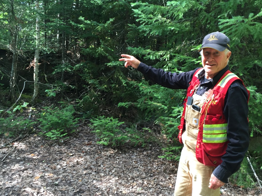 Prosper Gold's Dirk Tempelman-Kluit points to the former Ashley gold mine's processing facility from the 1930s. Photo by Salma Tarikh.