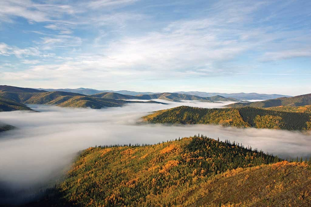 A foggy day in the Yukon's White Gold district. Photo by Shawn Ryan.