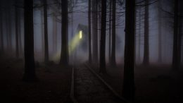 Foggy train depot in the forest. Credit: pexels.com.