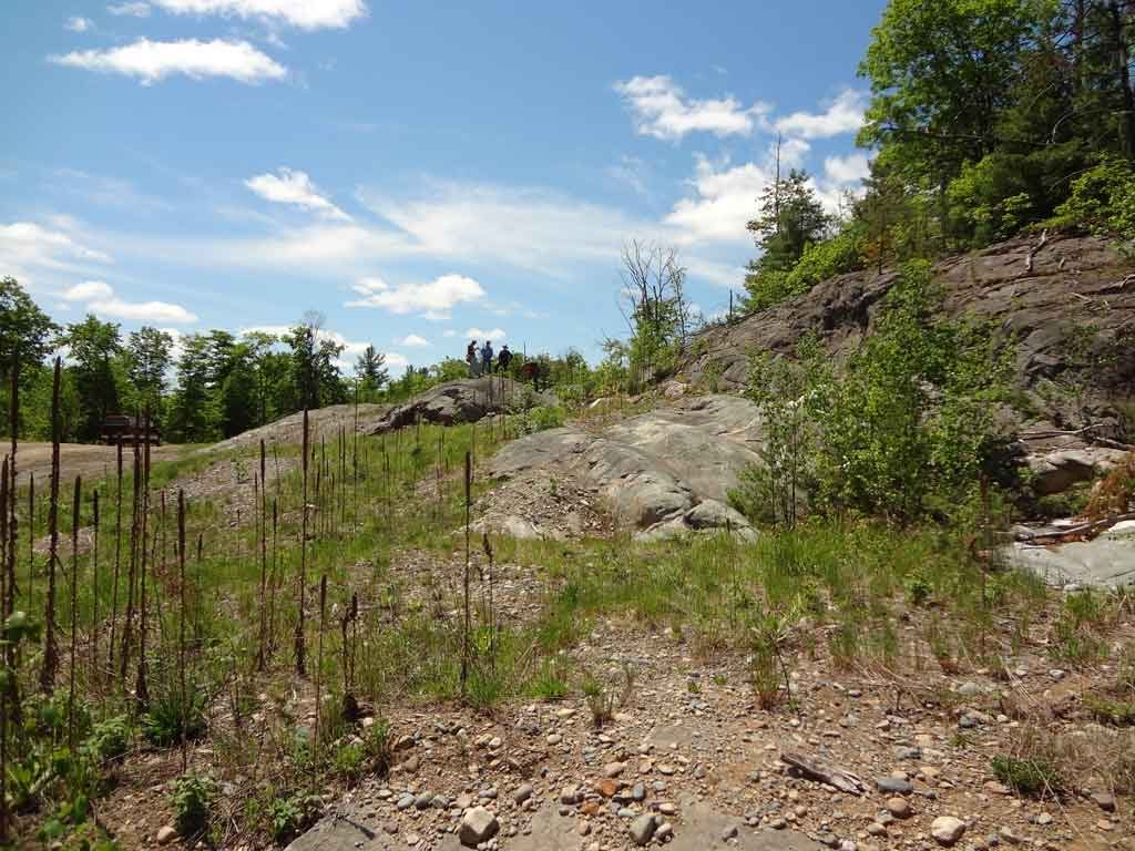 New Age Metals' River Valley project in Ontario. Credit: New Age Metals.