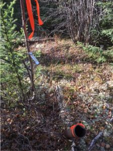 A historical drill casing found on the MacBride property. Credit: Rockcliff Metals.