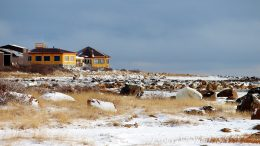 A polar bear outside the luxury Seal River Heritage Lodge in northern Manitoba. Credit: Manitobahot.com
