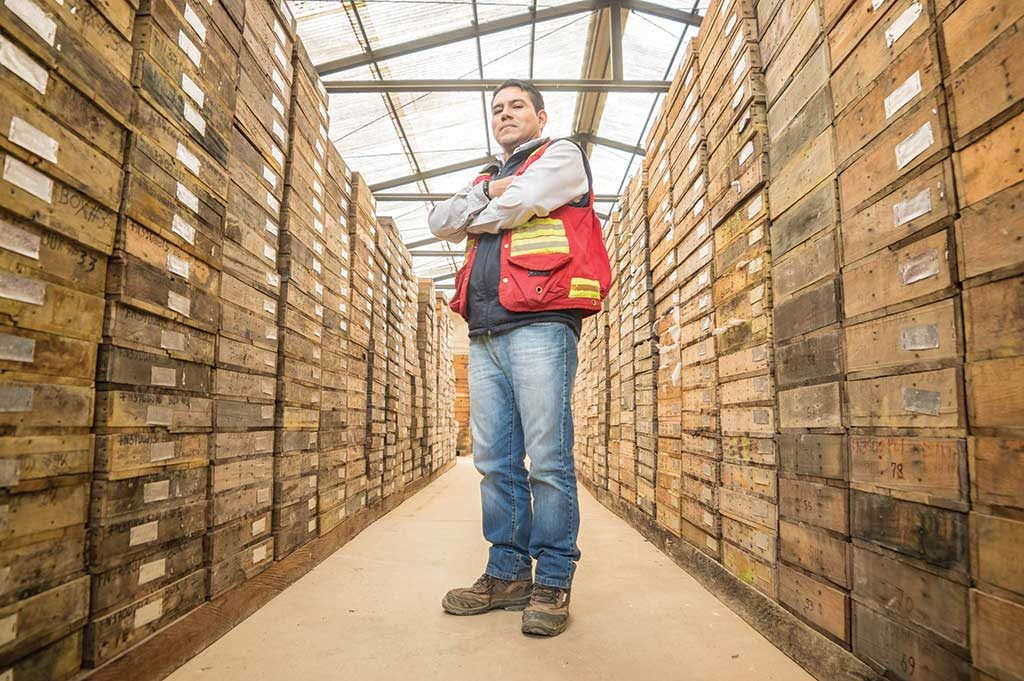 A worker in a core storage facility at the Fruta del Norte project. Credit: Lundin Gold