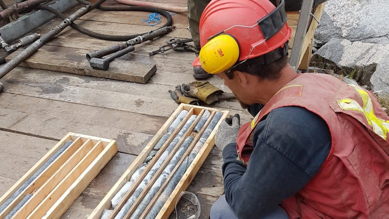 A geologist with fresh drill core at Braveheart Resources Inc's Alpine Gold Mine project near Nelson, British Columbia. Photo credit: Braveheart Resources Inc.