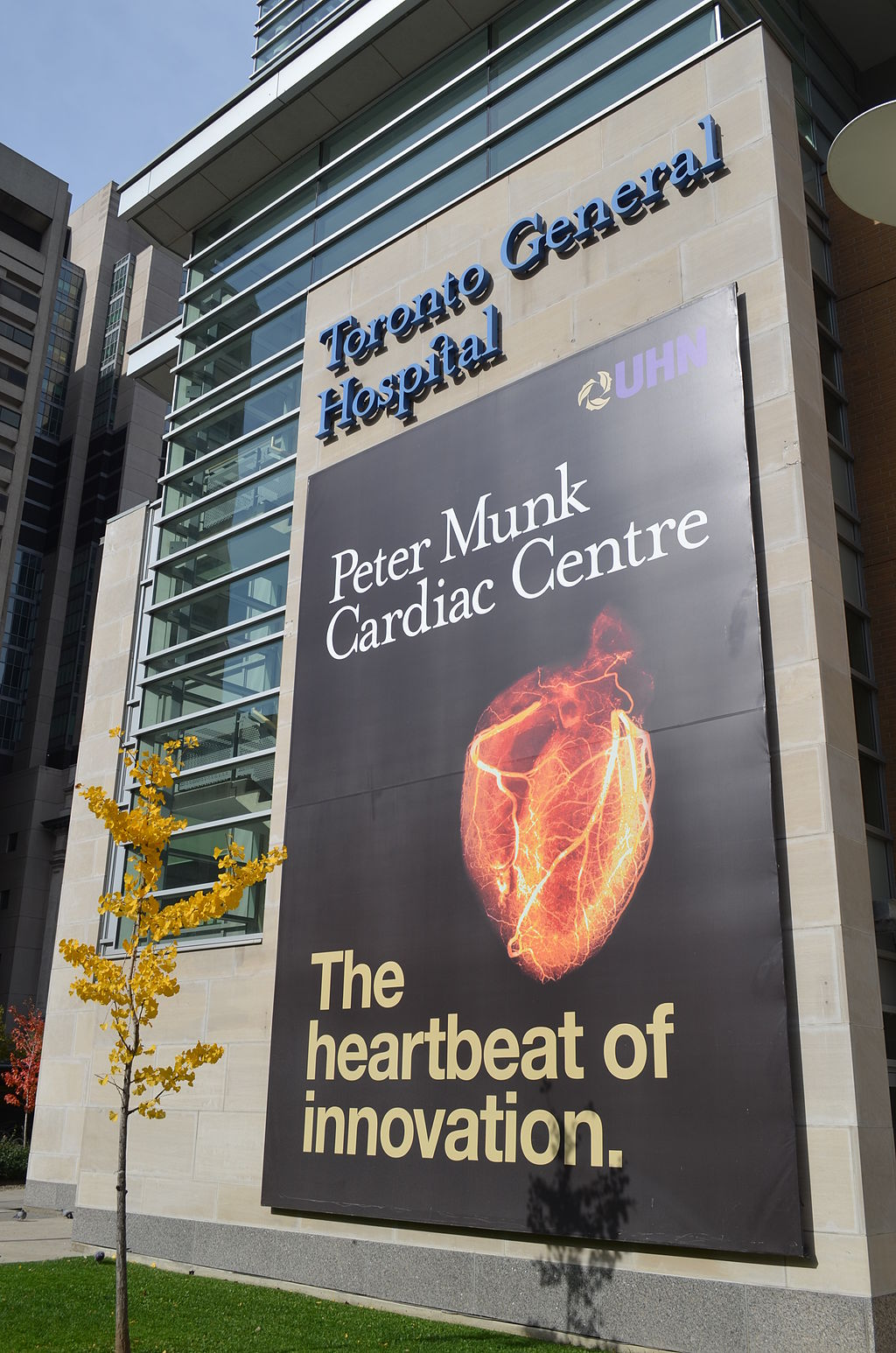 The Peter Munk Cardiac Centre at the Toronto General Hospital. Credit: Barrick Gold.
