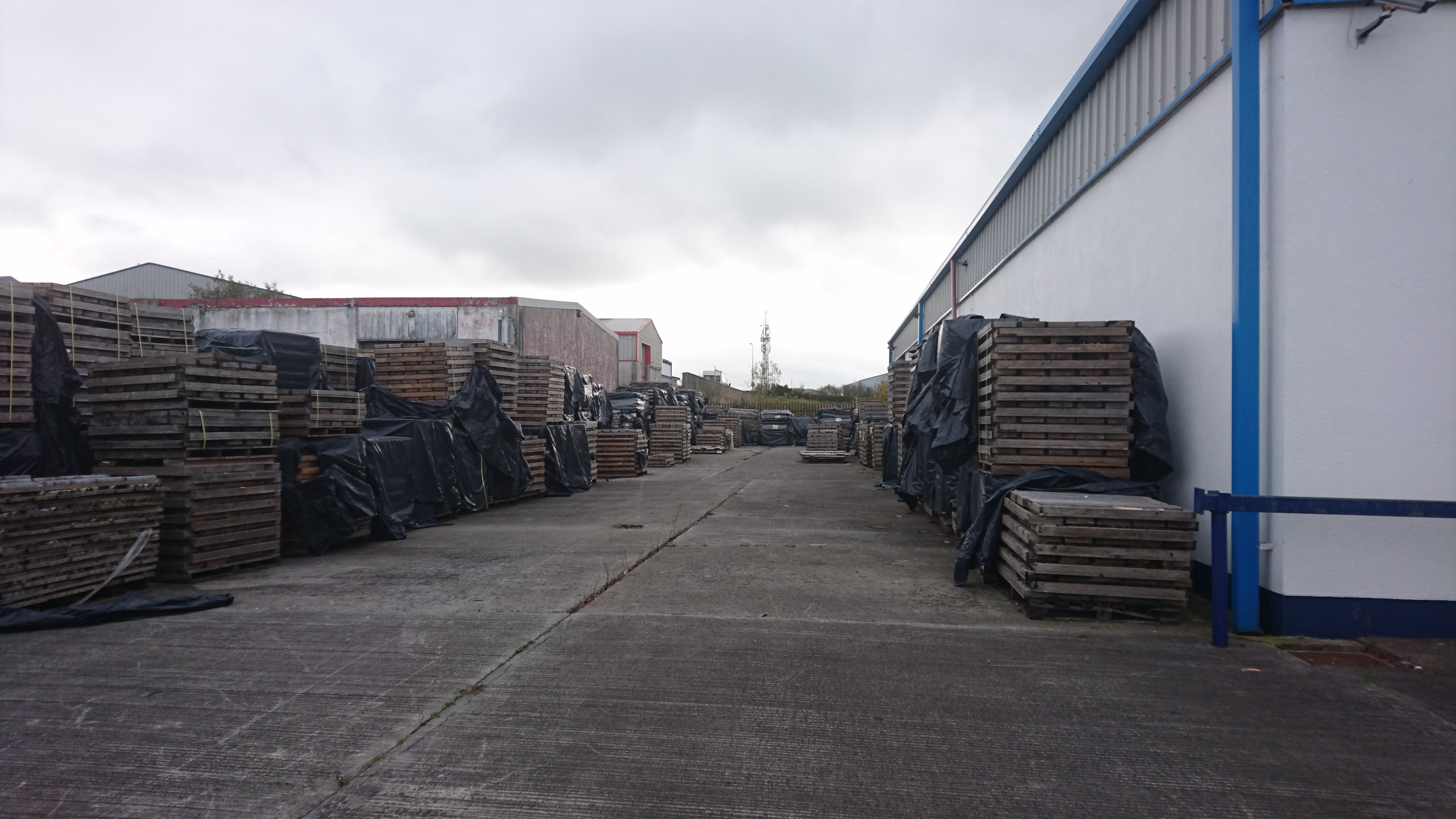 Outside Group Eleven's Mullingar core shack, the company has amassed all the previous core from Teck drilling at Ballinalack. Photo by Richard Quarisa.