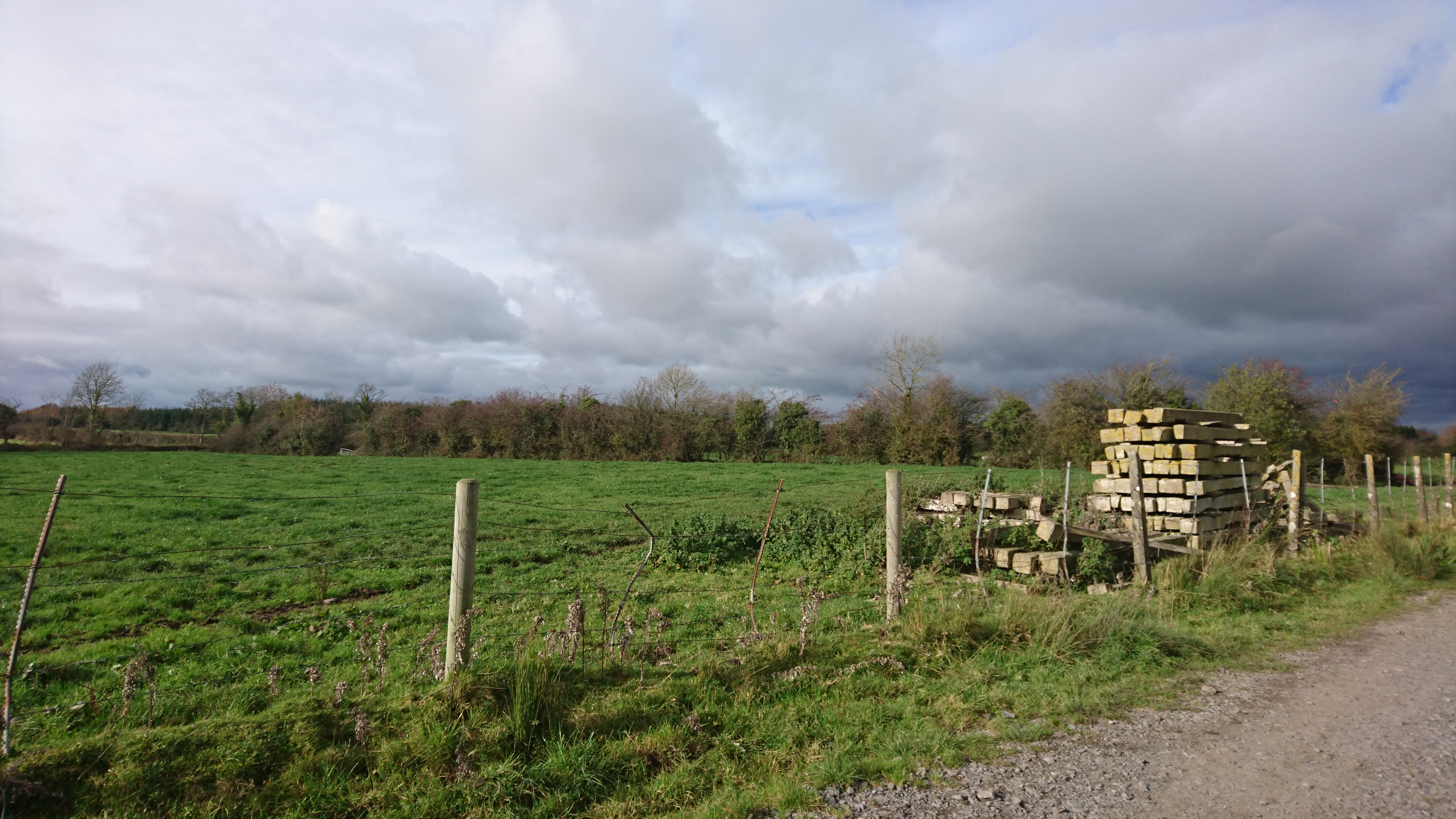 Group Eleven's Ballinalack project sits amid farm land in the Irish countryside. Photo by Richard Quarisa.