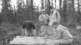 Robert Boyd, Ashton's president and CEO (left), Pierre Bertrand, vice-president of exploration with Soquem, Brooke Clements, Ashton's vice-president, and Robert Lucas, project geologist, examine drill core from a mini-bulk sample from the Renard 3 kimberlite in the Otish Mountains of north-central Quebec.