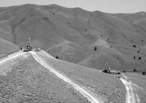 First-pass drilling at Evolving Gold's Rattlesnake Hills project, in Wyoming, has returned promising results for the junior.