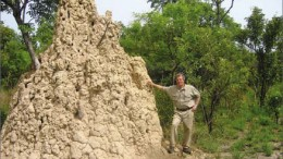 A termite mound dwarfs Merrex Gold president and CEO Greg Isenor at the Siribaya gold project in Mali. Photo by Merrex Gold