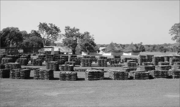 Core stacked at Rockgate Capital's exploration camp at the Falea uranium-silver-copper project in southwestern Mali. Photo by Rockgate Capital
