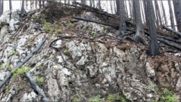 The Ted vein outcropping at Independence Gold's 3Ts gold-silver project in central British Columbia. Photo by Independence Gold
