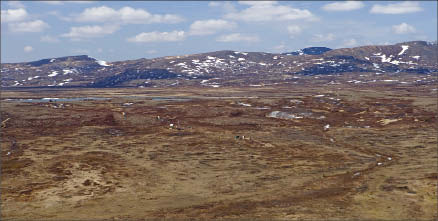Drill rigs on the surface of the Pebble copper-gold deposit in southwest Alaska. Photo by Northern Dynasty Minerals