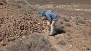 Kelly Cluer, Altan Nevada's director of exploration, inspects a sample at the Radar gold-silver property in Nevada. Photo by Matthew Keevil.