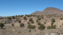 The landscape at Midway Gold's Pan gold project in Nevada. Source: Midway Gold