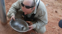 True Gold Mining's vice-president of exploration Scott Heffernan examining sulphide mineral grains panned from reverse circulation samples samples at the Watinoma discovery at the Karma gold project in Burkina Faso.  Source: True Gold Mining