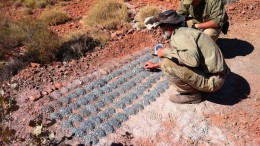 Geologists study drill cuttings at the Beatons Creek gold project in western Australia (2012). Source: Novo Resources