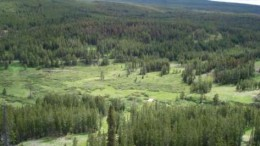 Taseko Mines' New Prosperity copper-gold project near Williams Lake, B.C. Credit: Taseko Mines