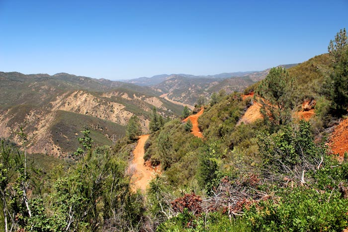 Looking north along drill roads at California Gold's Fremont gold project in California. Photo by Katie Lister.