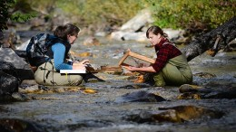 MWH Global environmental scientists Willow Campbell (left) and Erica Bishop conduct a macroinvertebrate survey at Midas Gold's Stibnite gold project in Idaho. Credit: Midas Gold
