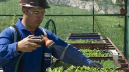 An employee waters plants at Endeavour Silver's tree nursery near its Bolaitos mine in Mexico. Credit:  Endeavour Silver