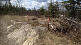 Flags mark historic drill holes at Oban Mining's Miller gold project, 18 km southeast of Kirkland Lake, Ontario. The outcrop shows an aphanitic syenite dyke (foreground), with intruding (darker) meta-basalts to the right. Source: Oban Mining