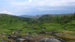 Looking west along a trans-lithospheric fault of the Garder-Voisey's Bay system on Equitas Resources' Garland nickel property in Labrador. Source: Equitas Resources