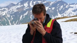 Warwick Board, Pretium Resources' chief geologist, inspects a sample while conducting regional exploration at the Brucejack gold project in British Columbia. Credit: Pretium Resources.