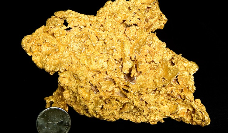 A gold nugget from the Committee Bay project in Canada's Arctic. Credit: Committee Bay Resources.