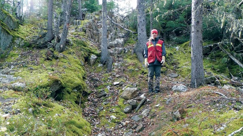 Assistant project geologist Ashley Durham beside a century-old trench on the 007 vein at Rockcliff's Laguna gold property, 20 km southeast of Snow Lake, Manitoba. Rockcliff has collected high-grade gold, silver and zinc samples from the trench. Credit: Rockcliff Metals.