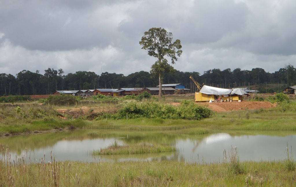 Sandspring Resources' Toroparu gold project in Guyana. Credit: Sandspring Resources.