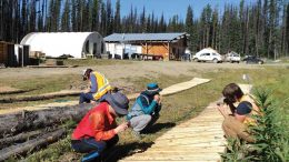 Project geologist Cole Godrey (far right) and Daewoo representatives examine core at the Kwanika copper-gold project, 250 km east of Smithers, British Columbia. Credit: Serengeti Resources.