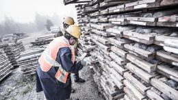 Employees inspect drill core at the Island Gold mine near Wawa, On. Credit: Richmont Mines.