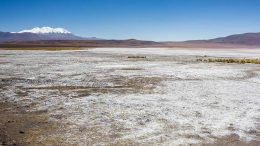 Lithium Chile's exploration property. Credit: Lithium Chile.
