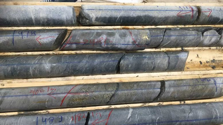 Drill core samples from the Windfall gold project. Credit: Osisko Mining.