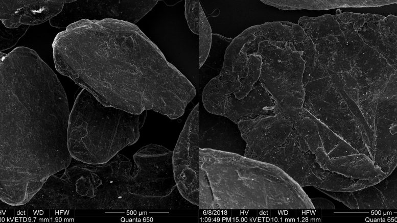 Scanning electron microscope images of Northern Graphite's +50 mesh XL flake graphite from its Bissett Creek project in Ontario. Credit: Northern Graphite.