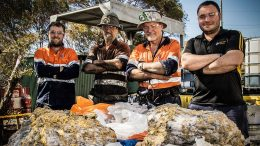 RNC Minerals personnel behind high-grade gold specimens from the Beta Hunt mine in Australia. From left: geologist Lachlan Kenna, air-leg miner Henry Dole, mine foreman Warren Edwards and senior geologist Zaf Thanos. Photo by ABC Goldfields-Esperance Jarrod Lucas.