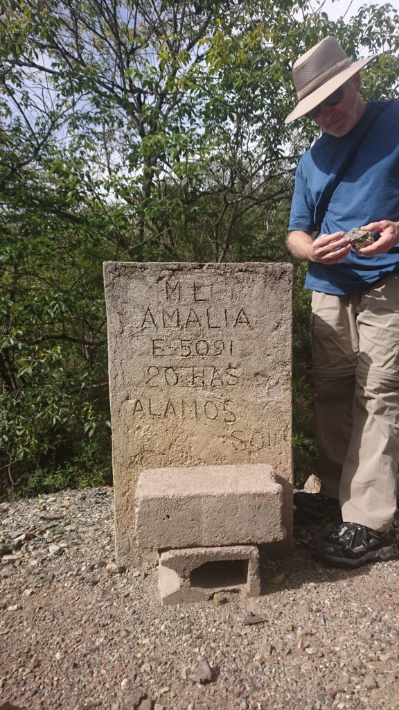 Minaurum director David Jones examines rock samples next to a historic claim marker on the Alamos project. Photo by Richard Quarisa.