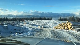 Logging operations on the Nilkitkwa copper-gold property in central British Columbia, which Pacific Empire Minerals has optioned. Credit: Pacific Empire Minerals.
