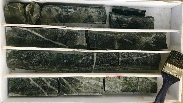 Drill core from Lumina Gold's Gran Bestia gold target in Ecuador shows potassic alteration with abundant stockwork veining. This sample interval has a grade of 14.95 grams gold per tonne and 0.1% copper over 2 metres. Credit: Lumina Gold.