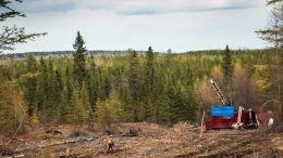 A drill rig in the Bear-Rimini zone at Great Bear Resources' Dixie gold property in Red Lake, Ontario. Credit: Great Bear Resources Ltd.