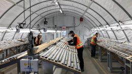 Workers examine drill core at Wallbridge Mining's Fenelon gold project in northwestern Quebec. Credit: Wallbridge Mining.